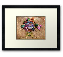 party time flys Framed Print