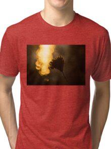 Luminous Seed Shine Tri-blend T-Shirt