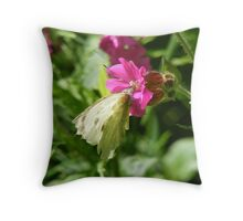 cabbage white resting Throw Pillow