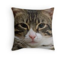 Monty the Moggy Throw Pillow