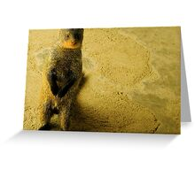 Friendly Mongoose Greeting Card