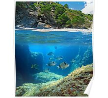 Mediterranean cove and rocky seabed with fish underwater Poster