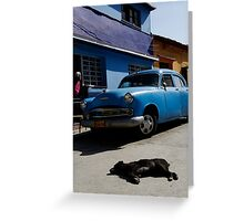 Mad dogs & Englishmen go out in the mid-day sun! Greeting Card
