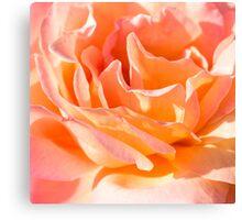Nested Petals Canvas Print