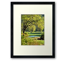 Nothing As Refreshing As The New Colors Of Springtime :)) Framed Print