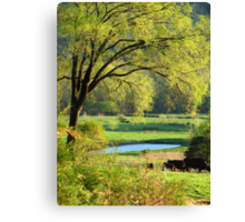 Nothing As Refreshing As The New Colors Of Springtime :)) Canvas Print