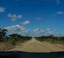 Long Dirt Road by Marie Watt
