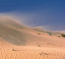 Drifting dune - Birdsville, QLD by graphicscapes