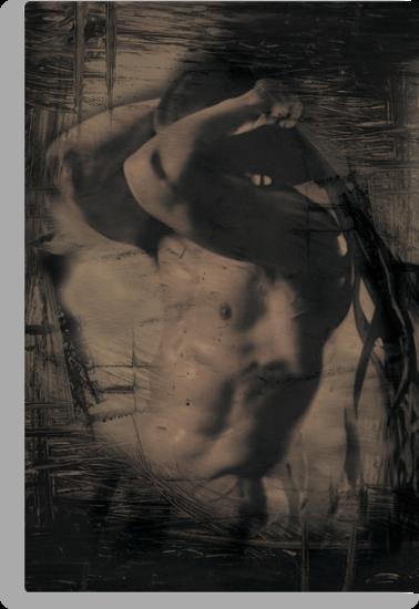 Nude male bodybuilder 2 by Lee Lee
