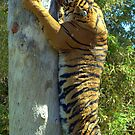 Tree Hugger by Angela Pritchard