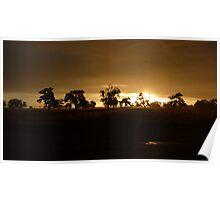 Bronze Jarrah - Rural Western Australia Poster