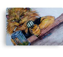 stray cats Canvas Print
