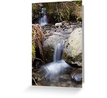 A Gentle Flow Greeting Card