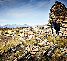 The Dog & Cairn - High Spy, Cumbrian Mountains by David Lewins
