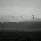 Windmills in the fog by MandaP