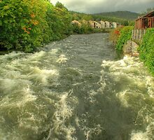 The River Leven by VoluntaryRanger