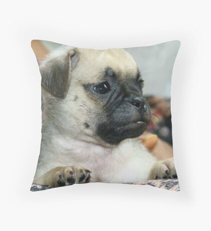 Irresistible love. Throw Pillow