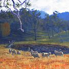 From Halls Creek Road (Glendon) by Cary McAulay