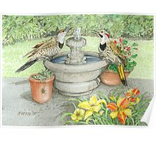 Flickers at the Fountain on a Hot Summer Day Poster