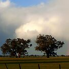 Storm moving over by Julie Sleeman