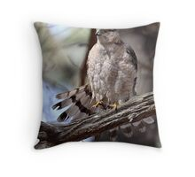 Tailspin/Coopers Hawk Throw Pillow