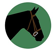 Minimalist Horse → Black/Green Photographic Print
