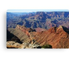 CANYON SPINE Canvas Print