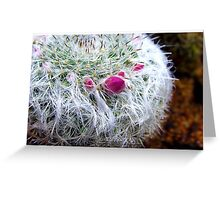 Every cactus has it's flower Greeting Card