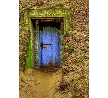 A Wolf at the Door  Photographic Print