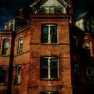 Asylum for the Insane by Barbara Ingersoll
