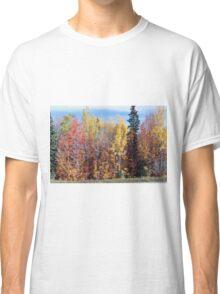 Fall Splender Classic T-Shirt