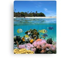 Beach and coral reef Canvas Print