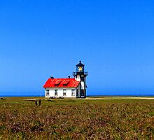 Point Cabrillo Lighthouse #1 by Stephen Burke