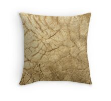 Guess what? Throw Pillow