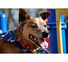 Sam at the Playground Photographic Print