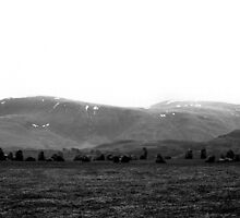 Castlerigg Stone Circle Silhouette by stephenmark photography