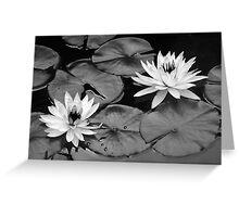Going Steady - Black and White Interpretation Greeting Card