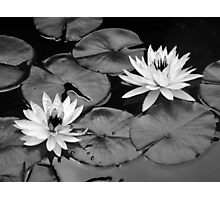 Going Steady - Black and White Interpretation Photographic Print