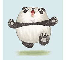 Happy Panda Photographic Print