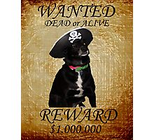 Wanted Photographic Print