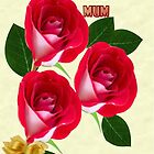 Special Wishes for U mum by Jandzart013
