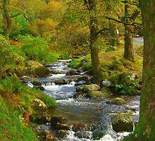 Magical Glendalough, Ireland by mayahanley
