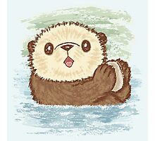 Sea otter Photographic Print
