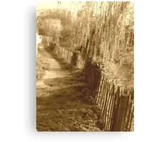 On the beaten track Canvas Print