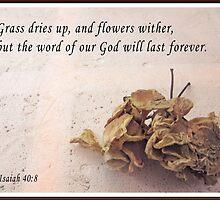 Isaiah 40:8 by Albert