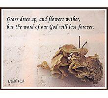 Isaiah 40:8 Photographic Print
