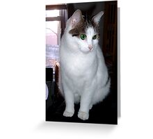 Picture of Becky with enough pixels to print Greeting Card