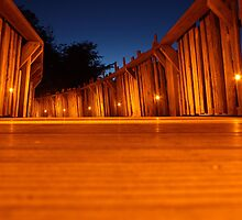 Tree House Walkway by Paul Clayton
