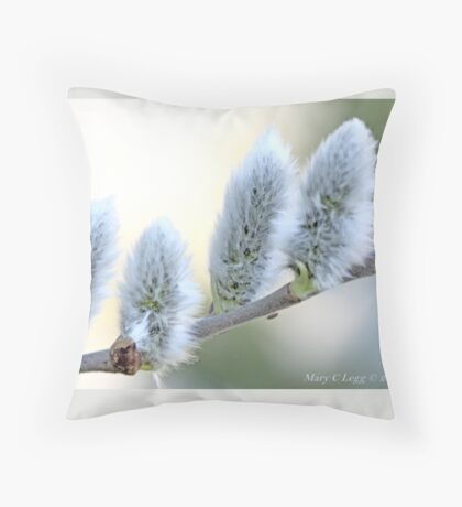 Pussywillow blooms Salix A Throw Pillow
