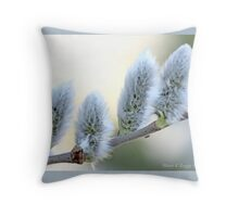 Pussywillow blooms Salix  B Throw Pillow